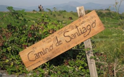 On the Way to St James: What the Camino Taught Me about Business